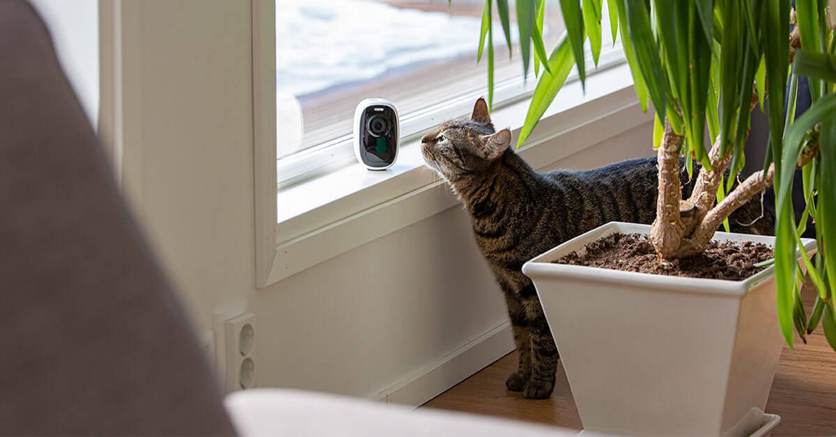 Akulla varustettu langaton valvontakamera on helppo siirrellä
